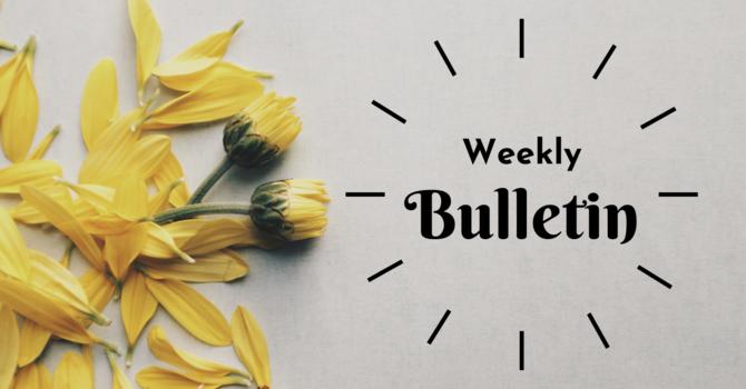 Bulletin | June 13, 2021 image