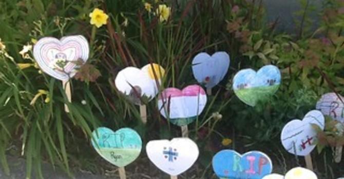 A Garden of Hearts image