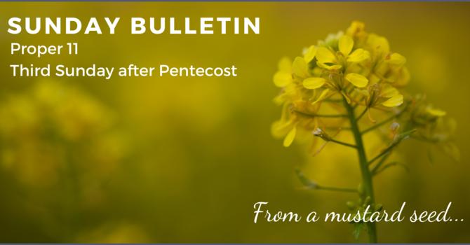 Bulletin & ZOOM link - June 13, 2021