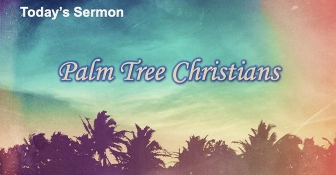 Palm Tree Christians