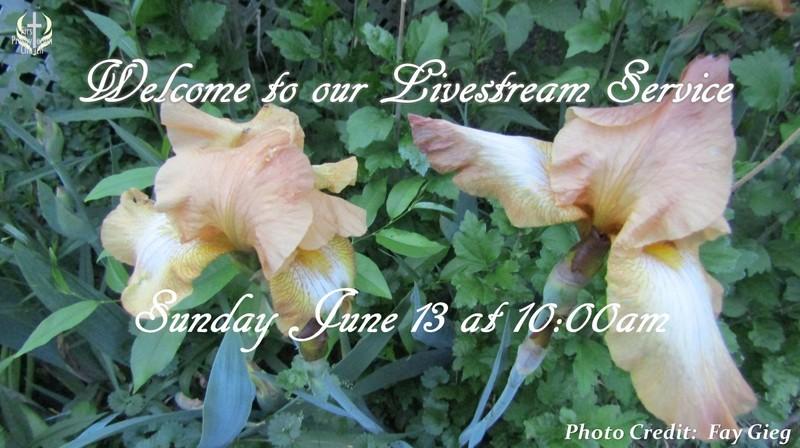 Sunday June 13 Livestream Service