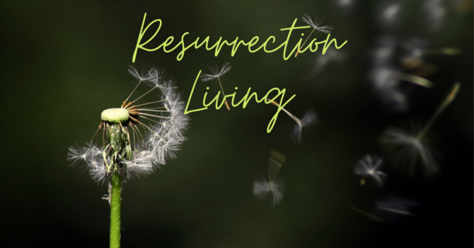 Living Hope from a Living Savior