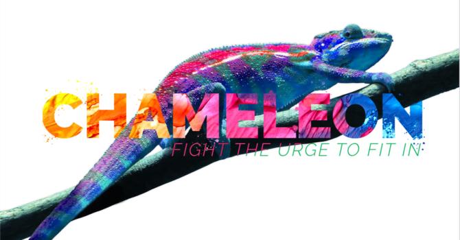 """Chameleon Week #1 """"Do Not Conform"""""""