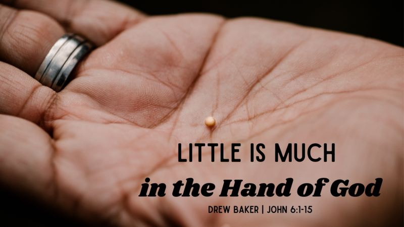 Little Is Much in the Hand of God