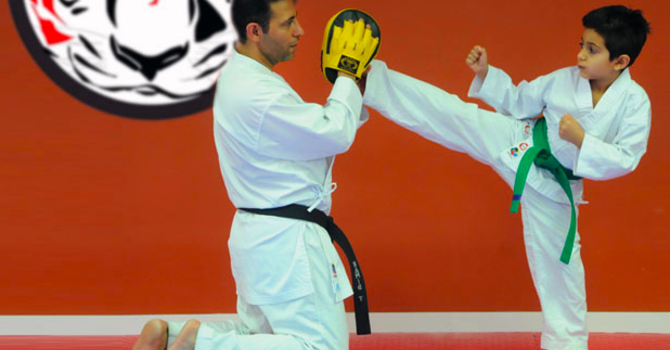Tiger's Eye Karate-Do