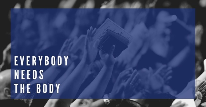 Everybody Needs The Body