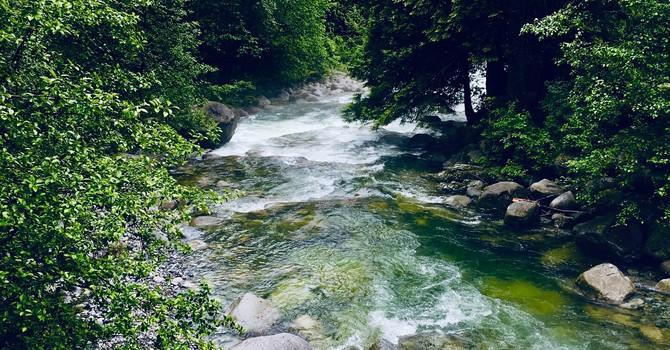 Varley Trail with Rice Lake Loop Update  image