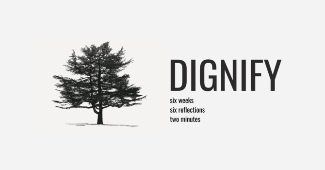 Dignify Video Series Begins Monday! image