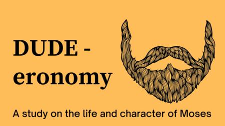 Dude-eronomy
