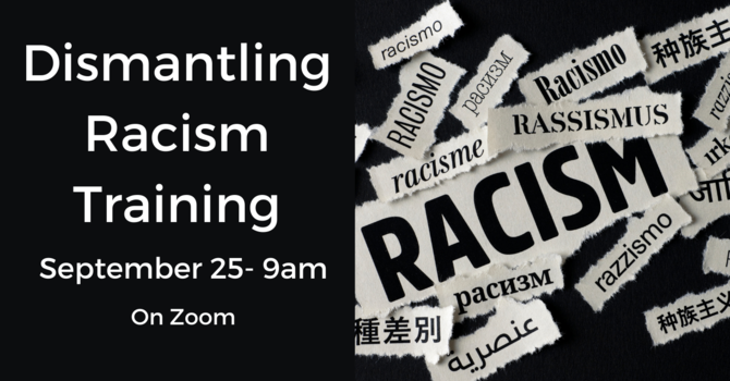 Diocesan Dismantling Racism Training  image