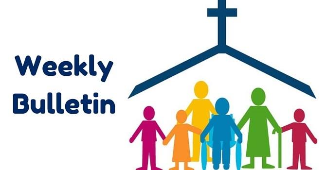 Weekly Bulletin   November 6, 2016 image
