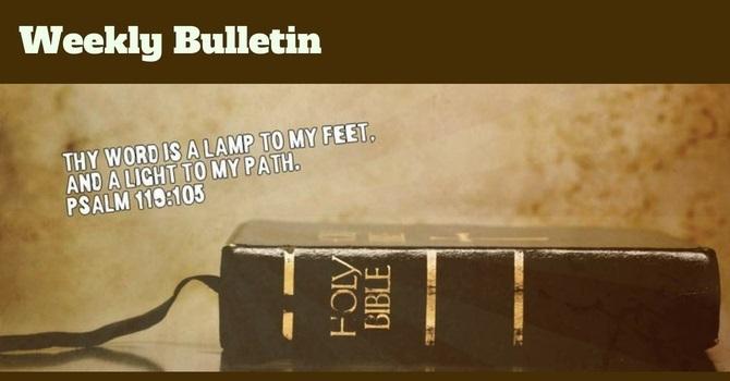 Bulletin   January 13, 2019 image