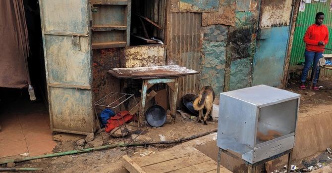 A walk through Mathare... image