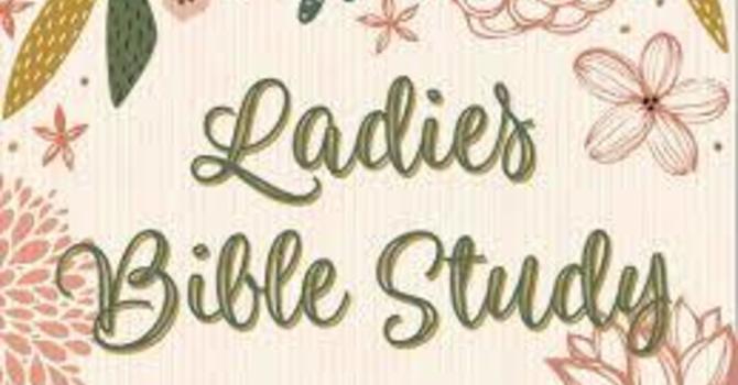 Abide: Women in the Word