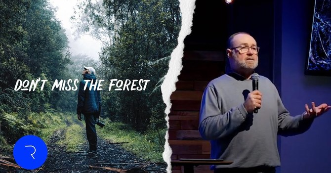 Don't Miss The Forest