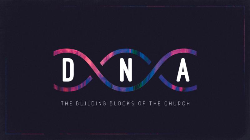 DNA   Forgiveness