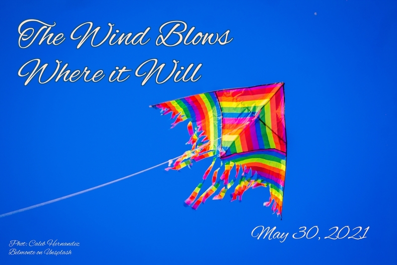 The Wind Blows Where it Will