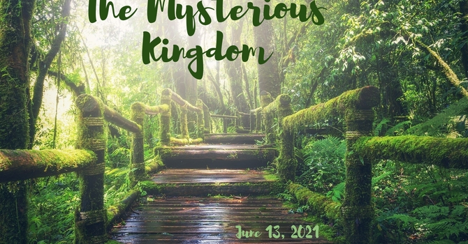 The Mysterious Kingdom