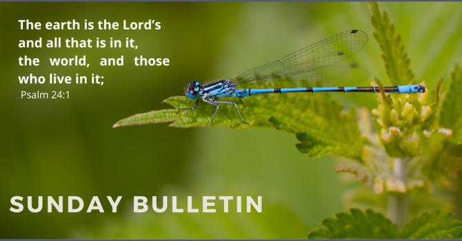 Sunday Bulletin & Zoom Link - July 11, 2021 image