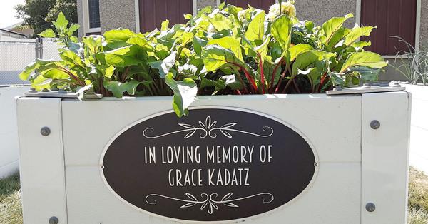 St. David's Garden Helping 'Beet' Hunger