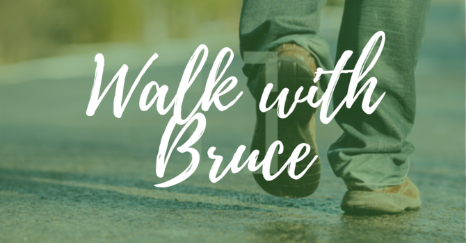WALK with Bruce