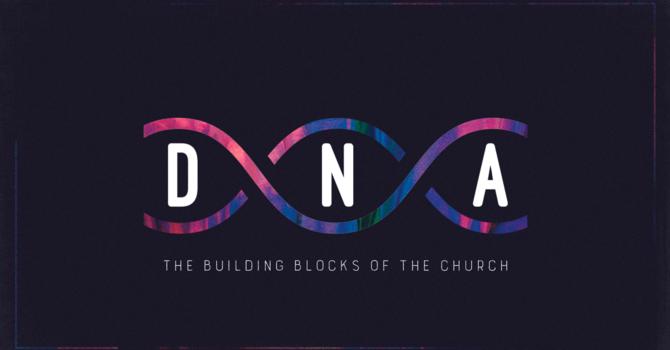 DNA | Discipleship