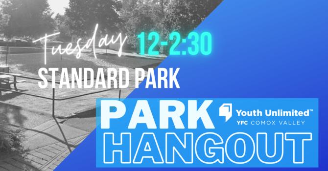 Park Hangout   Courtenay