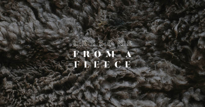 Lessons From A Fleece
