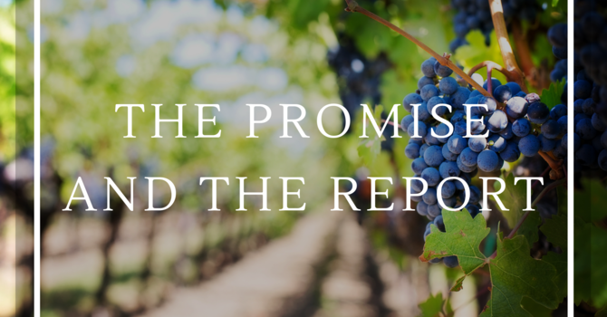 The Promise and the Report