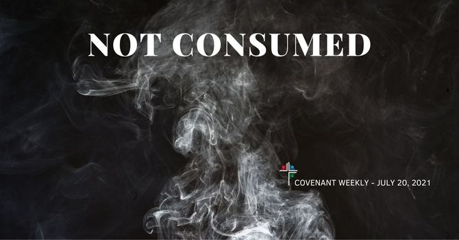 Not Consumed image
