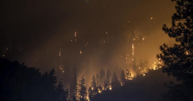 Fire Response image