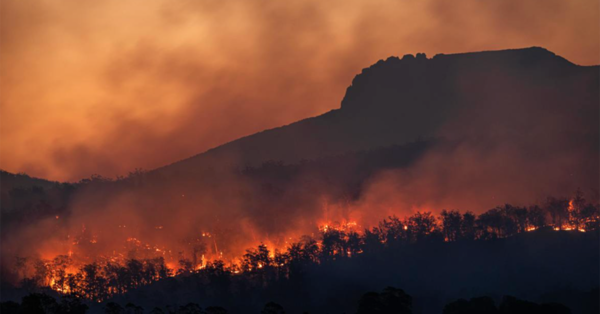 Diocese Encouraged to Support Communities Impacted by Wildfires