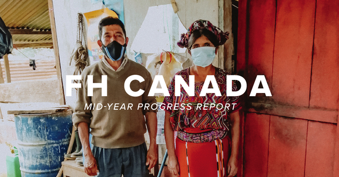Xonca Progress Report image