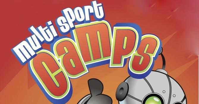 Multi-Sport Camp Volunteers  image