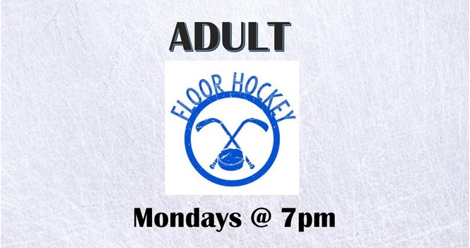 Adult Floor Hockey