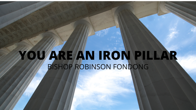 You are an Iron Pillar