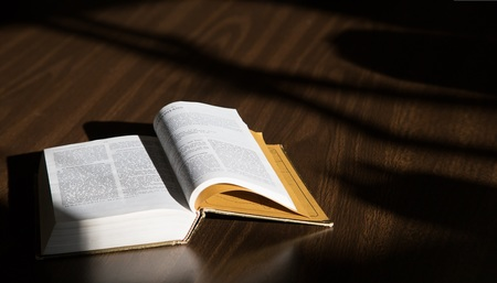 Lectionary/Bible Study