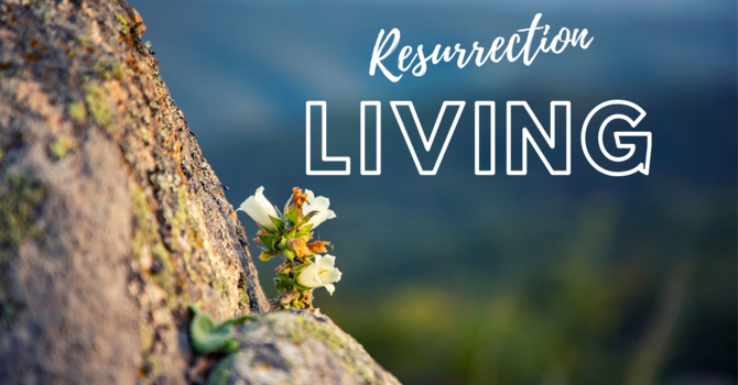 The Availability of Life for the Christian