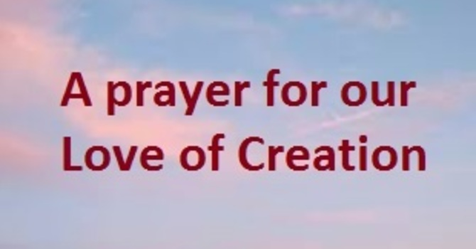Help to Reawaken Our Love for Creation (Prayer)  image