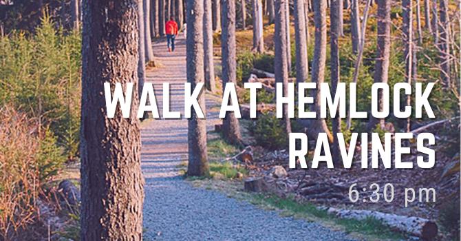 Trail walk - Hemlock Ravines