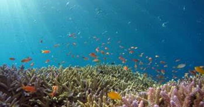 Breathing Under Water