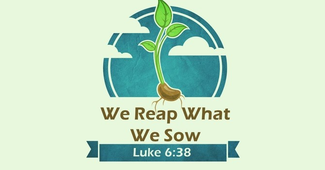 We Reap What We Sow