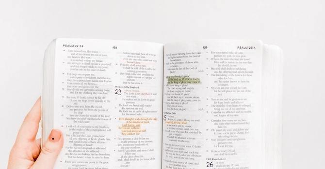 Donuts+Bible Binge