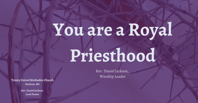 You are a Royal Priesthood