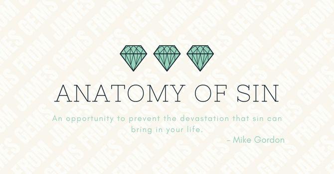 Anatomy of Sin image