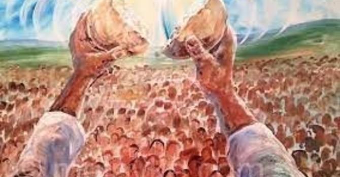 Pentecost 11 image