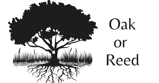 Oak or Reed | 10AM 08.01.21