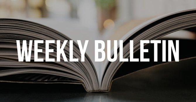 August Bulletins image
