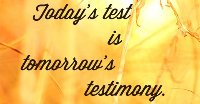 The Testimony of God