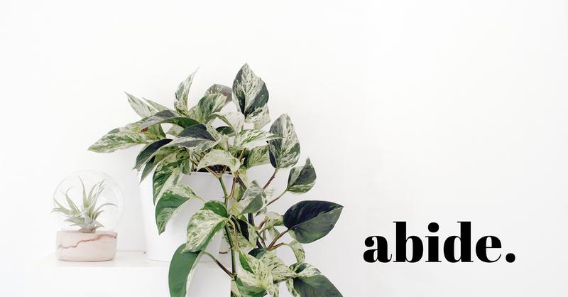 Abide Intro